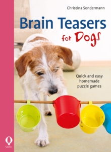 Image for Brain teasers for dogs  : quick and easy homemade puzzle games