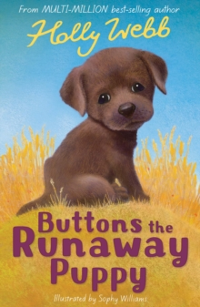 Image for Buttons the runaway puppy