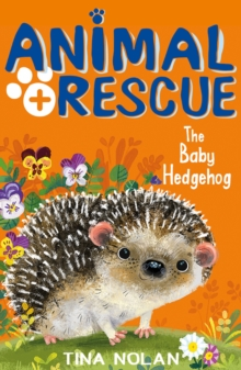 Image for The baby hedgehog