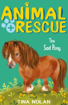 Image for The sad pony