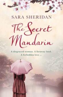 Image for The secret mandarin