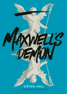 Image for Maxwell's demon