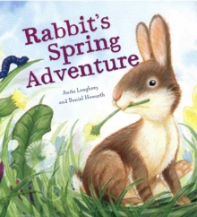 Rabbit's spring adventure - Loughrey, Anita
