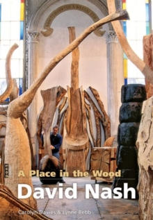 Image for David Nash  : a place in the wood