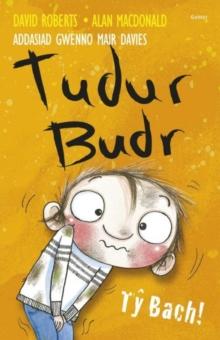 Image for Tudur Budr: Ty Bach
