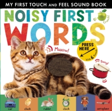 Image for Noisy first words  : my first touch and feel sound book