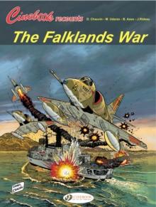 Image for The Falklands War