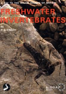 Image for Key to the Major Groups of British Freshwater Invertebrate Animals