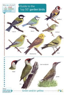 Image for Guide to the 'top 50' garden birds
