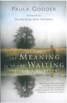 Image for The Meaning is in the Waiting : The Spirit of Advent