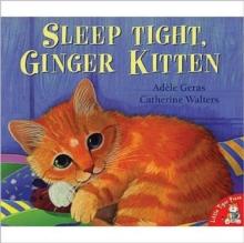 Image for Sleep tight, ginger kitten