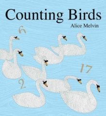 Image for Counting birds