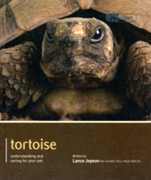 Image for Tortoise  : understanding and caring for your pet