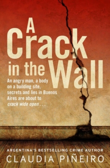Image for A crack in the wall