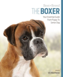 Image for Boxer Best of Breed