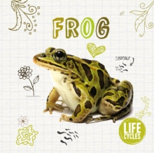 Image for Life cycle of a... frog