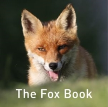 Image for The fox book