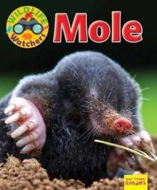 Image for Mole