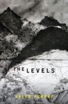 Image for The levels