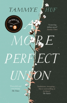 Image for A more perfect union