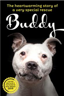 Image for Saving Buddy