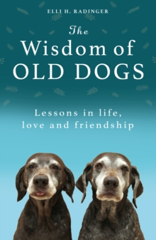 Image for The wisdom of old dogs  : lessons in life, love and friendship