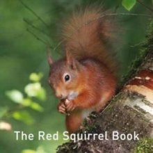 Image for The red squirrel book