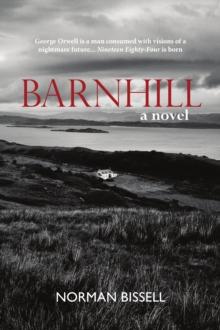 Image for Barnhill  : a novel