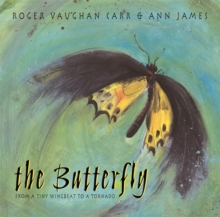 Image for The butterfly  : from a tiny wingbeat to a tornado