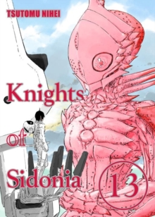 Image for Knights of SidoniaVolume 13