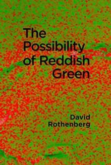 Image for The Possibility of Reddish Green : Wittgenstein Outside Philosophy