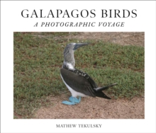 Image for Galapagos Birds : A Photographic Voyage