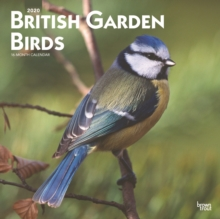 Image for British Garden Birds 2020 Square Wall Calendar