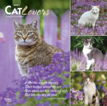 Image for CAT LOVERS 2021 SQUARE FOIL