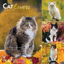 Image for CAT LOVERS 2022 SQUARE FOIL