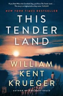 Image for This tender land  : a novel