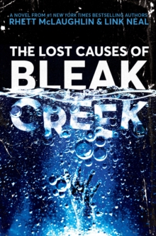 Image for The lost causes of Bleak Creek  : a novel