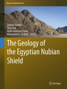 Image for The Geology of the Egyptian Nubian Shield
