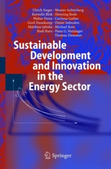 Image for Sustainable Development and Innovation in the Energy Sector