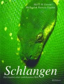 Image for Schlangen : Faszination einer unbekannten Welt
