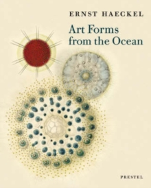 Image for Art forms from the ocean  : the radiolarian atlas of 1862