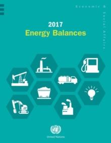Image for 2017 Energy Balances