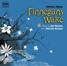 Image for Finnegan's wake